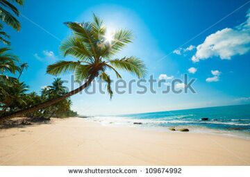 stock-photo-untouched-tropical-beach-in-sri-lanka-109674992