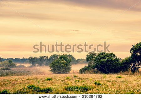stock-photo-countryside-landscape-with-misty-weather-210394762