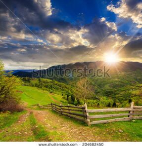 stock-photo-summer-landscape-fence-near-the-meadow-path-on-the-hillside-forest-in-fog-on-the-mountain-at-204682450