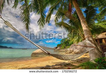 stock-photo-tropical-paradise-hammock-between-palm-trees-at-the-seaside-on-a-tropical-island-170256272