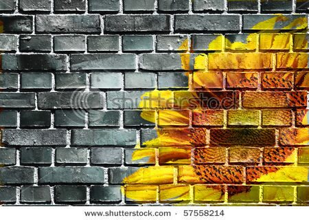 stock-photo-sunflower-and-wall-57558214