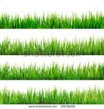 stock-vector-grass-isolated-on-white-and-also-includes-eps-vector-186786281