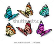 stock-vector-set-of-realistic-colorful-butterflies-vector-148972094