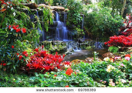 stock-photo-water-fall-in-garden-69788389