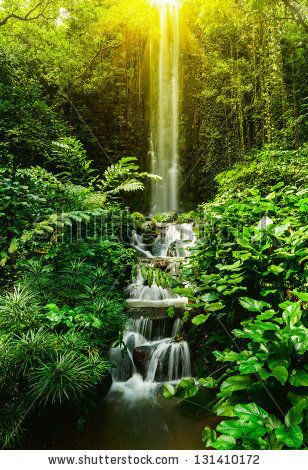stock-photo-tropical-waterfall-in-rain-forest-131410172