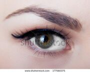 stock-photo-macro-image-of-human-eye-177560375