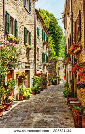 stock-photo-narrow-street-in-the-old-town-in-italy-205721134