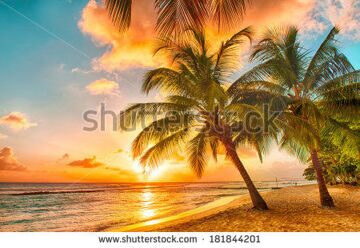 stock-photo-beautiful-sunset-over-the-sea-with-a-view-at-palms-on-the-white-beach-on-a-caribbean-island-of-181844201