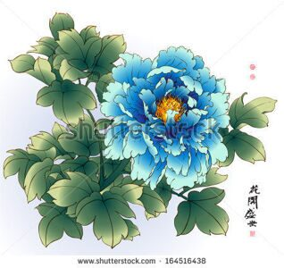 stock-vector-vector-ink-painting-of-chinese-peony-translation-of-calligraphy-the-blossom-of-flourishing-age-164516438