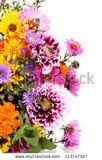 stock-photo-beautiful-bouquet-of-bright-flowers-isolated-on-white-113747527