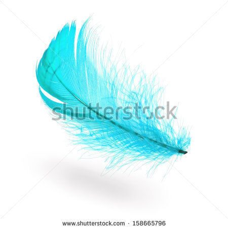 stock-photo-light-blue-flying-feather-with-shadow-on-white-background-158665796