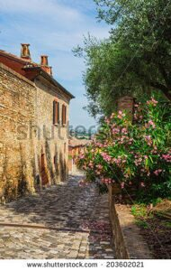 stock-photo-typical-italian-street-in-a-small-provincial-town-of-tuscan-italy-europe-203602021