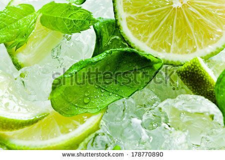 stock-photo-lime-pieces-and-leaves-of-mint-with-ice-178770890