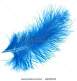 stock-photo-blue-elegant-feather-isolated-on-white-background-148001063