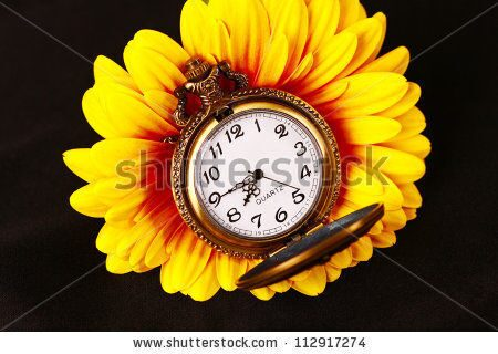 stock-photo-pocket-watch-and-gerber-flower-112917274