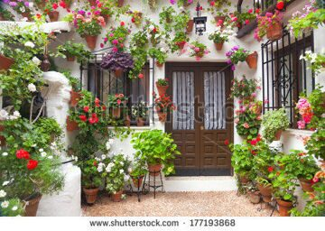 stock-photo-flowers-decoration-of-vintage-courtyard-typical-house-in-cordoba-spain-european-travel-177193868
