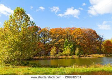 stock-photo-colorful-fall-foliage-of-deciduous-trees-near-the-water-small-gazebo-near-the-pond-in-us-national-209912764