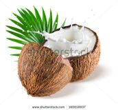 stock-photo-coconuts-with-milk-splash-and-leaf-on-white-background-160018937