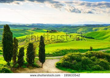 stock-photo-tuscany-rural-sunset-landscape-countryside-farm-cypresses-trees-green-field-sun-light-and-195633542
