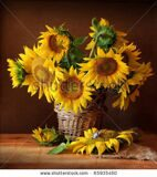 stock-photo-still-life-with-sunflower-and-butterfly-65935450