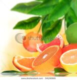 stock-photo-fresh-citruses-background-94156969