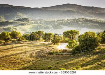 stock-photo-an-image-of-the-beautiful-landscape-near-volterra-italy-169505267