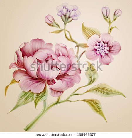 stock-photo-vintage-fantasy-peony-spring-flowers-and-leaves-isolated-135465377