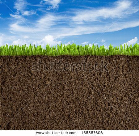 stock-photo-soil-grass-and-sky-background-135857606