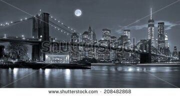 stock-photo-panoramic-view-new-york-city-manhattan-downtown-skyline-at-night-with-skyscrapers-and-blue-tonality-208482868