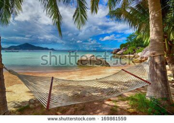 stock-photo-tropical-paradise-hammock-at-the-lovely-beach-at-the-seaside-between-palm-trees-with-the-view-to-169861559