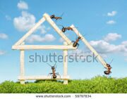 stock-photo-team-of-ants-constructing-wooden-house-with-matches-59797834